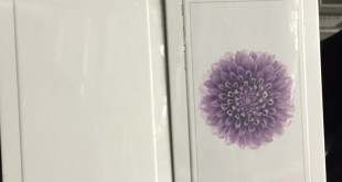 nuova scatola iPhone 6