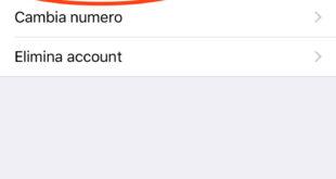 guida WhatsApp e la verifica in 2 passaggi