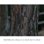 lumix fz2000 foto & video