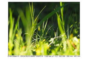 Olympus M10 mk3 foto test