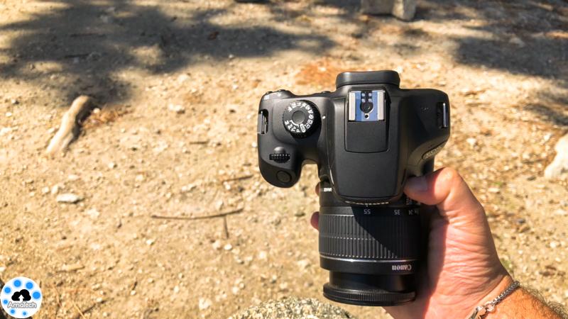 Canon EOS 4000
